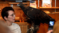 Julie Collier with her Golden Eagle